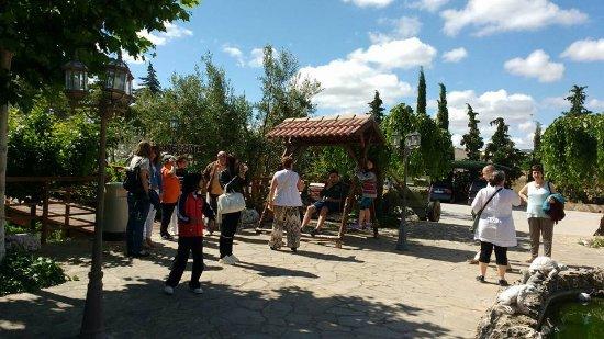 Rincon del Cierzo: parte del jardín visto desde todas las habitaciones y con acceso directo desde cada una de ellas