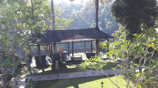 Beji Ubud Resort: 20160615_084236_large.jpg