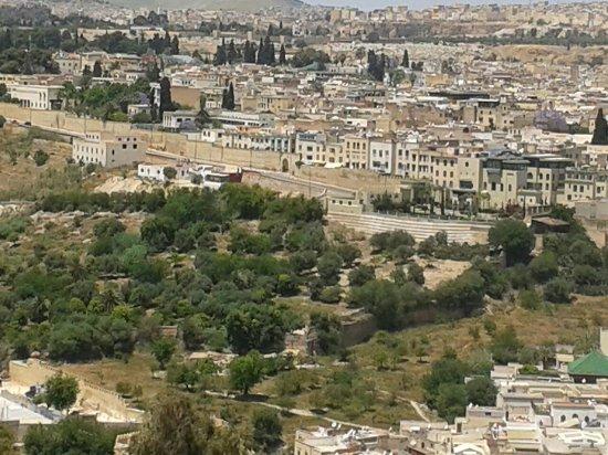 athene of africa tours medina fez