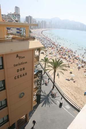 Don César Apartments: Apartamentos Benidorm