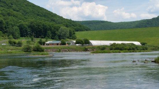 วอร์เรน, เพนซิลเวเนีย: The Kinzua Dam Fish Hatchery