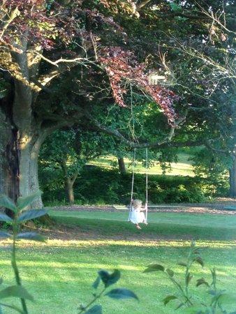 Karlaby, Suécia: Vacker trädgård med bland annat gräsmatta, stora träd och en bäck