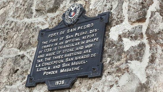 Fort San Pedro: 20160619_172845_large.jpg