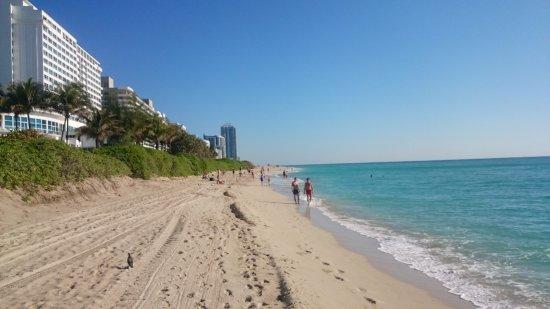 ديزاين سويتس آت كاسل بيتش: Praia