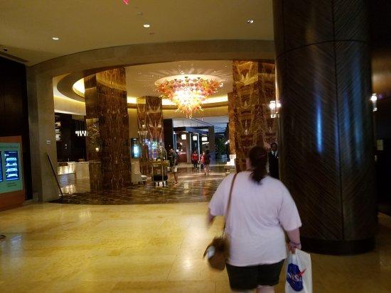 Hilton Americas - Houston Photo