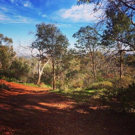 Lesmurdie, Avustralya: photo1.jpg