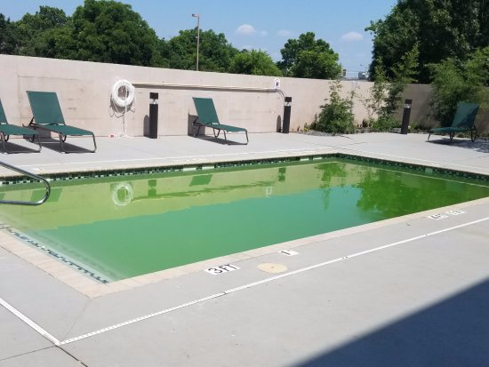 Wingate by Wyndham Round Rock Hotel & Conference Center: Green pool. They did close the pool Sat to shock the pool. Should have been shocked during the w