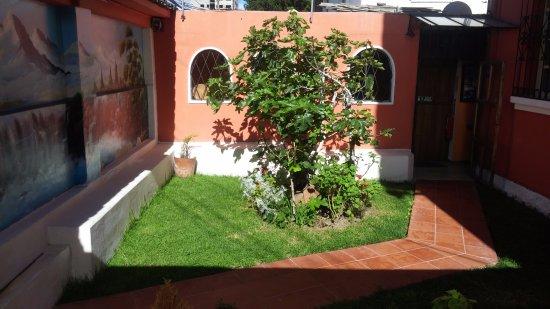 Hotel Andino: Zona común