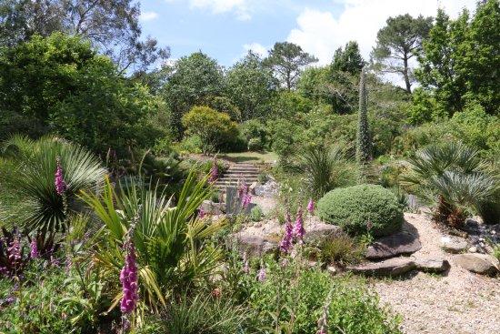 Un petit d tour picture of parc botanique de cornouaille combrit tripadvisor - Photo de jardin exotique ...
