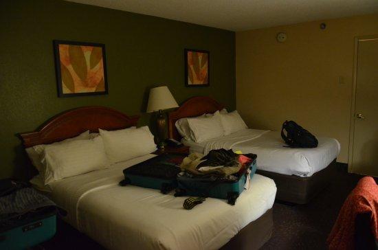 Holiday Inn Chicago North Shore (Skokie): Leider ohne Tageslicht dafür Chlorgeruch....
