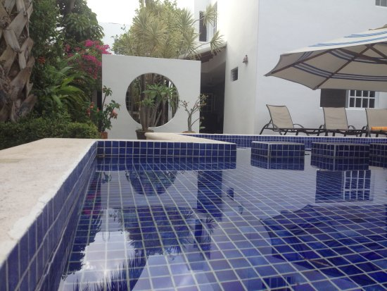 Villa Escondida Bed and Breakfast: pool and garden