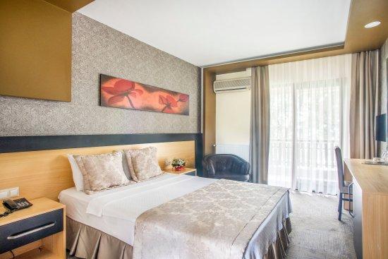 Berksoy Hotel: Room