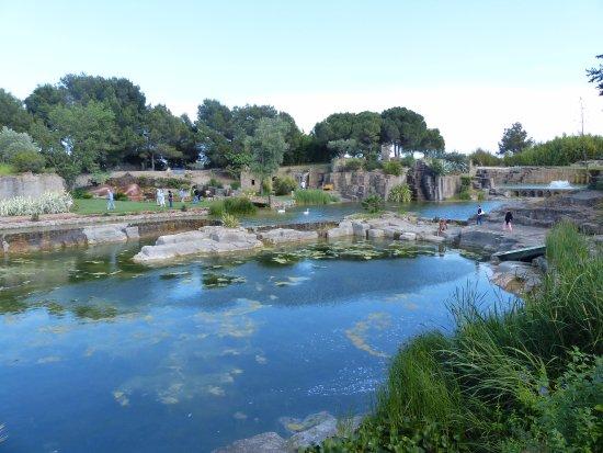 Piscine Photo De Le Jardin De Saint Adrien Servian