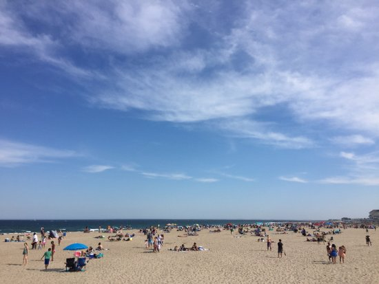 Hampton State Beach: The beach/