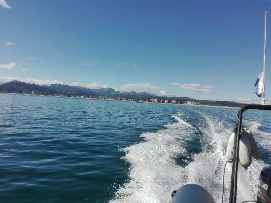 Nemodivers: navegando