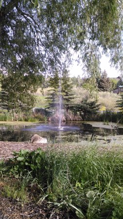 Bluebird Inn: fountain