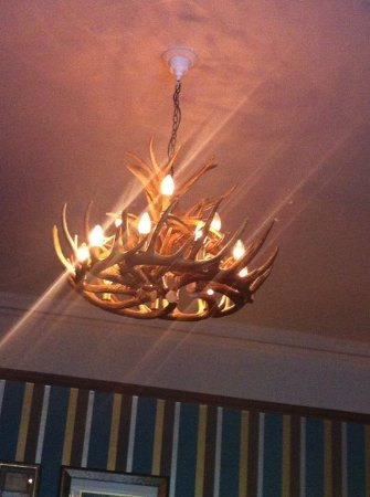 The Crown Manor House Hotel: Odd light fitting, but somehow it works in this room.