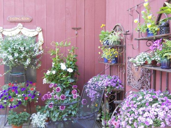 Pomfret, CT: les fleurs sur la terrasse