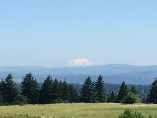 Powell Butte Nature Park: Mt St Helens from Powell Butte