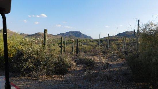 JW Marriott Tucson Starr Pass Resort & Spa Photo