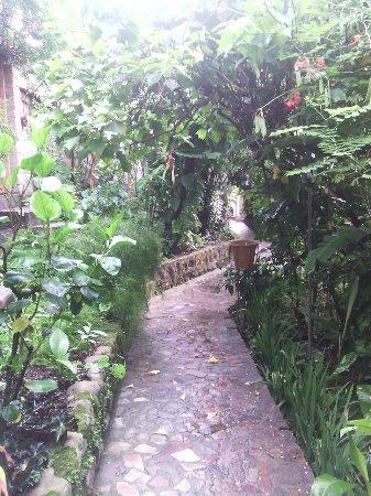 Hotel & Restaurant Guancascos: IMG_20160618_064028_large.jpg