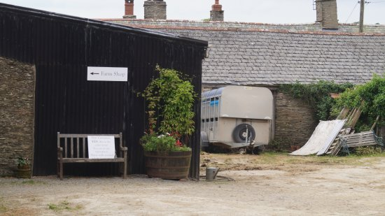 Combe Martin, UK: Indicknowle Farmyard with Shop to left