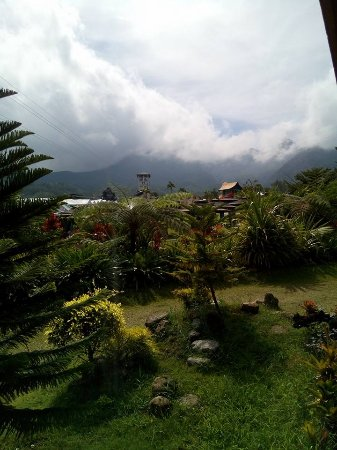 Campuestohan Highland Resort : View from the log cabin room.