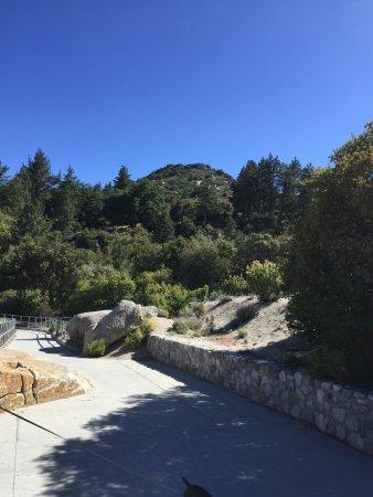 Idyllwild, Kalifornia: photo1.jpg