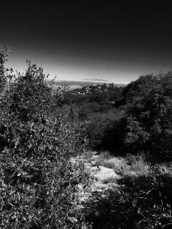 Idyllwild, Kalifornia: photo2.jpg