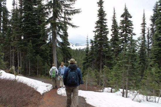 Mount Rainier: Most of the path was covered in snow and ice.