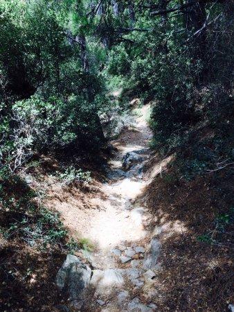 Marathokampos, Griekenland: Klättrade nästan till toppen men eftersom jag var ensam och det skulle börja åska och ev regna s