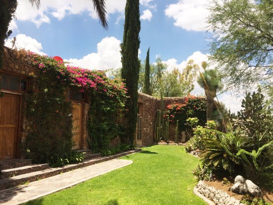 El Santuario, Meksiko: A small part of the vast Nirvana gardens.