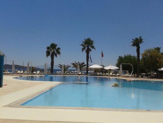 Club Muskebi: a spacious olympic pool closed to the beach area
