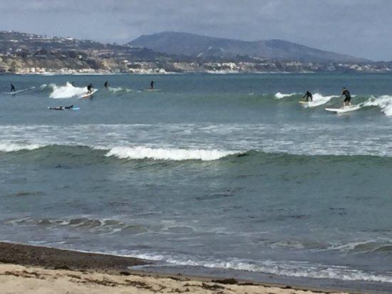 Dana Point, CA: Doheny State Beach direkt vor der Haustür war mein Lieblingbeach