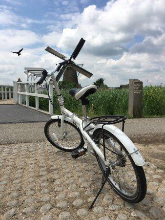 Boottocht Rotterdam - Kinderdijk: photo3.jpg