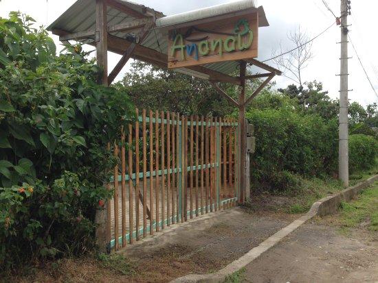 Ananaw Hostel : Entrada
