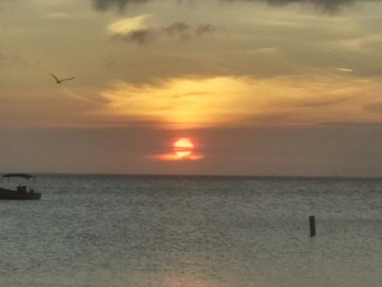 Coconut Beach : Sunset from the restaurant