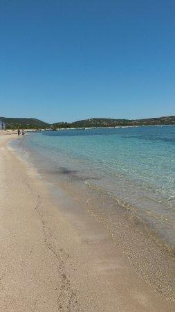 Plage de San Ciprianu (Corse) - Photo de Plage de Saint-Cyprien ...