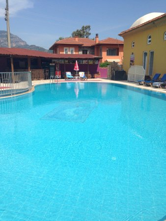 Şahin Villa Aparts: Lovely pool area a great place to relax