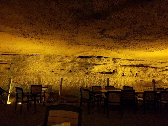 Cave Vineyard
