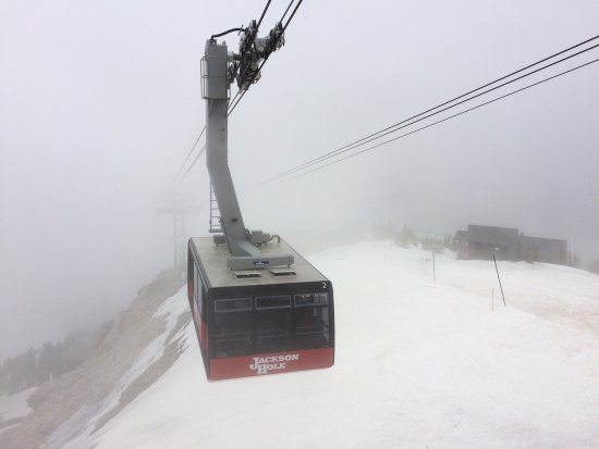Jackson Hole Aerial Tram: Amazing views from the top!
