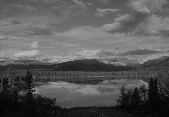 Denali Lakeview Inn: Black and White