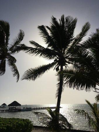 La Perla Del Caribe: photo0.jpg
