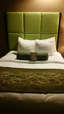 Comfort Suites New Bern : 20160618_000431_large.jpg