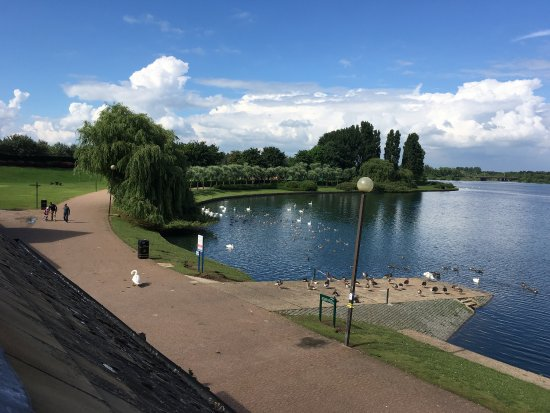 Premier Inn Milton Keynes East (Willen Lake) Hotel: Lovely views of the lake