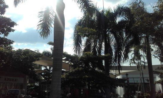 Foto de centro comercial jardin plaza cali rotulacion for Bodytech cali jardin plaza