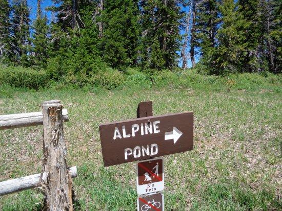 Cedar Breaks National Monument: trail sign