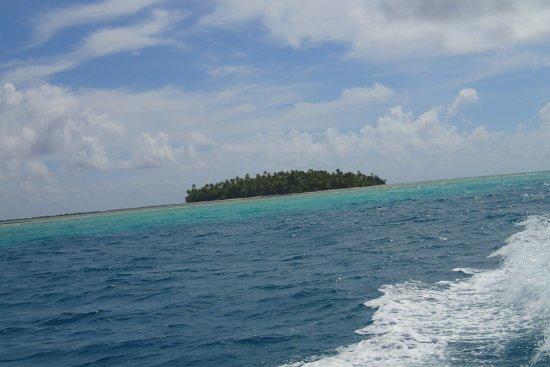 Bilde fra Tikehau Ninamu Resort