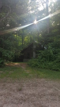 Cabins in the Pines Photo