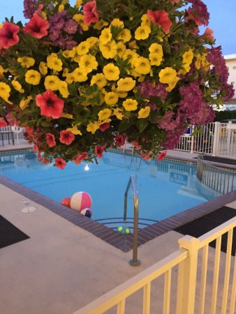 Esplanade Suites, a Sundance Vacations Resort: Back home and missing the BEAUTIFUL pool!!!!